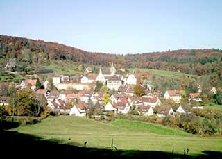 Blick auf Bebenhausen